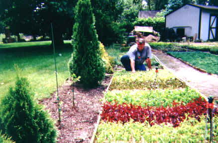 Mike McGroarty sticking cuttings in a bed of sand - Starting A Plant Nursery
